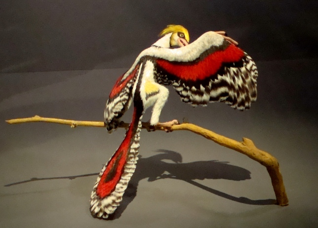 Reconstruction of an Archaeopteryx - Melbourne Museum