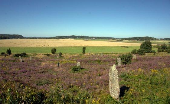 Viking Rune Stones